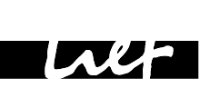 Lief Sports Bicycle lab